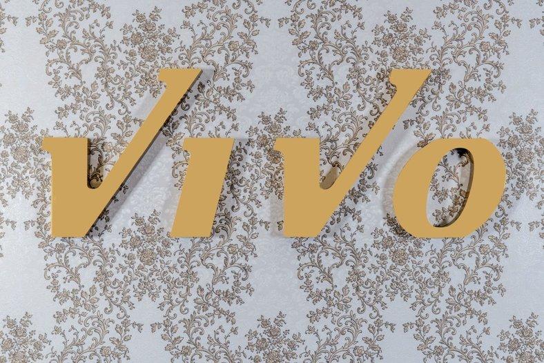 логотип компании Vivo