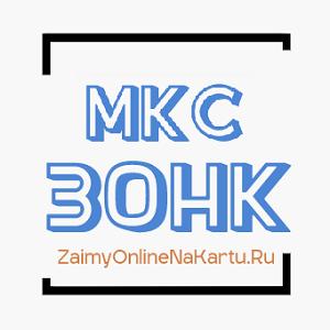 логотип компании МКС ЗОНК